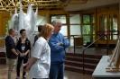 Kunstausstellung: Graduation