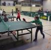 Mini-Tischtennis-Meisterschaft 2017
